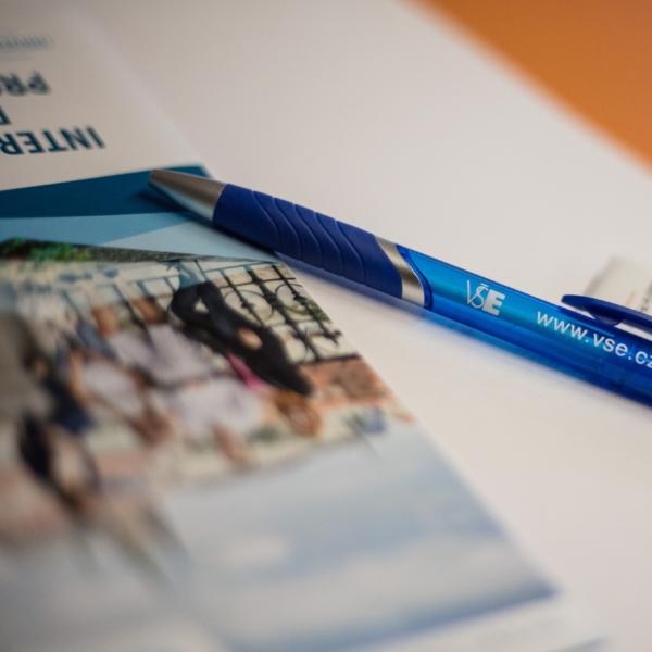 Programmes' Coordinators