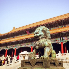 Meet VŠE in China
